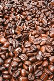 Coffee beans background Royalty Free Stock Image