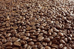 Coffee beans background. Background of dark brown dry roasted coffee beans royalty free stock photography