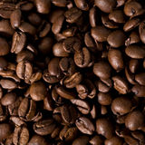 Coffee beans background. Roasted coffee beans closeup background stock photos