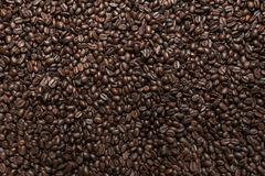 Coffee beans. Background, background made as Royalty Free Stock Photos