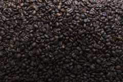 Coffee beans. Background, background made as Royalty Free Stock Image