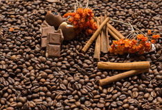 Coffee beans background with cinnamon, and chocolate. Wallpaper stock photos