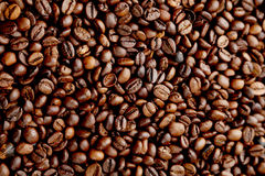 Coffee beans background close up Royalty Free Stock Image