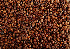 Coffee beans background close up Stock Photos