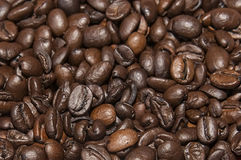 Coffee beans. Background close up Stock Photography