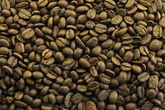 Coffee beans background. Close up of whole coffee beans background Stock Photography