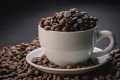 Coffee beans are the background. Coffee beans are the background Stock Image