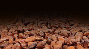 Coffee beans background in dark Royalty Free Stock Photo