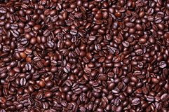 Coffee beans background. Food. coffee royalty free stock photo