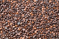 Coffee beans Background. Food and drink background Stock Photography