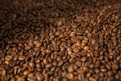 Coffee beans background. Hires coffee beans closeup background Stock Images