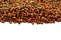 Coffee beans background. Coffee beans isolated on white close up background backdrop texture  roasted blank empty space for text Stock Images
