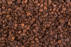Coffee Beans Background. Background of large quantities of coffee beans Stock Photography
