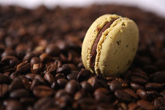 Coffee beans background Royalty Free Stock Images