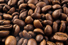 Coffee beans background macro. Macro of coffee beans background close up Royalty Free Stock Photo