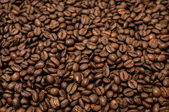 Coffee beans background. Roast Coffee beans background. Warm light Stock Photo
