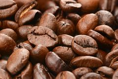 Coffee beans background. Roasted coffee beans macro close up stock photography