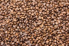 Coffee beans for the background. Stock Photography