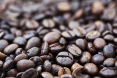 Coffee Beans Carpet Stock Photography