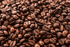 Coffee beans background. Some arabic coffee beans background Royalty Free Stock Photos