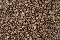 Coffee beans, background, texture. stock image