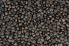Coffee beans on background. Texture stock photography