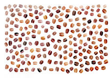 Coffee beans background. Various coffee beans painted watercolor background. Original hand painted Royalty Free Illustration