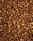 Coffee beans on the background stock photo
