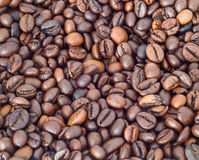 Coffee Beans Background. Whole roasted Coffee Beans Background close up Stock Photos