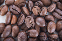 Coffee beans backround. Arabic coffee beans detail backround royalty free stock photos