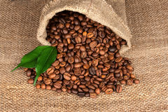 Coffee Beans in a Bag on sackcloth background Stock Photography