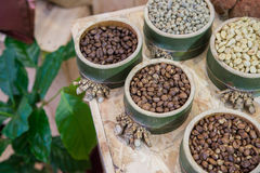 Coffee beans in bamboo tray  on brown wooden background Royalty Free Stock Photo