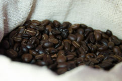 Coffee beans. On the basis of goods close up Royalty Free Stock Image