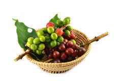 Coffee beans in basket Royalty Free Stock Photo