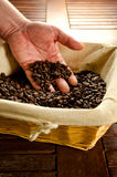 Coffee beans in a basket and human and Royalty Free Stock Photography