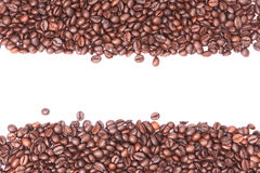 Coffee beans. Coffee bean on white background Stock Image