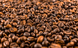 Coffee beans. Beautiful abstract background Stock Photos