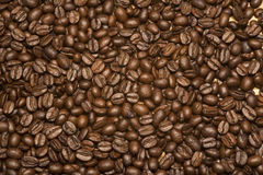 Coffee Beans 2. Birds eye view of coffee beans Stock Photography