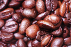 Coffee beans. Blending Coffees Beans for espresso Stock Images