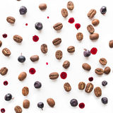 Coffee beans and  blueberry on white. Background Stock Photos