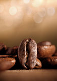 Coffee beans with bokeh Stock Photography