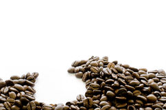 Coffee beans on bottom of white background, Coffee, Aroma Royalty Free Stock Photo
