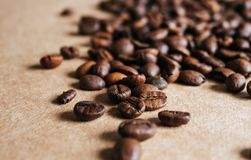 Coffee beans close up.. royalty free stock images