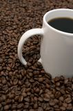 Coffee Beans and Brewed. Cup of coffee in a sea of coffee beans Stock Photos