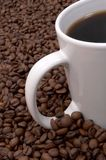 Coffee Beans and Brewed. Cup of coffee in a sea of coffee beans stock images