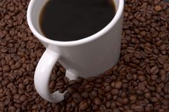 Coffee Beans and Brewed. Cup of coffee in a sea of coffee beans Royalty Free Stock Photo