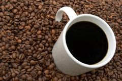 Coffee Beans and Brewed. Cup of coffee in a sea of coffee beans Royalty Free Stock Photography