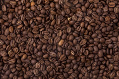Coffee beans. Brown coffee beans from above Royalty Free Stock Images
