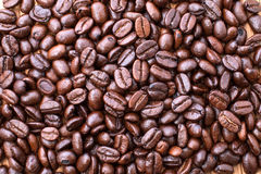 Coffee beans. Brown coffee beans on background Stock Photos