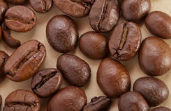 Coffee beans. Brown coffee beans, can be used as background Stock Image